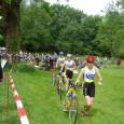 Teamtriathlon in Strausberg – diesmal war ich wieder dabei. Aber fast wäre es nicht soweit gekommen. Mein Rücken zwickte nach einem harten Training mit meiner Mannschaft wieder ein wenig, Schuld […]