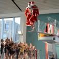 Den schwimmerische Abschluss dieses Jahres bildeten die Vereinsmeisterschaften von Z88. Die Kinder mussten dabei unterschiedliche Distanzen bewältigen: Chiara durfte sich an 50m Delphin und je 100m Rücken, Brust und Freistil […]